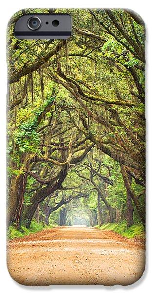 Charleston SC Edisto Island - Botany Bay Road iPhone Case by Dave Allen