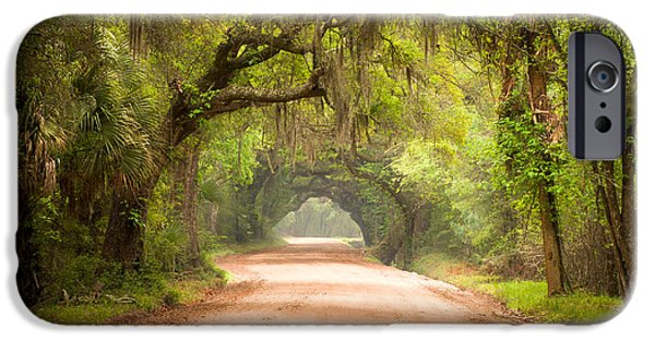 Fog iPhone Cases - Charleston SC Edisto Island Dirt Road - The Deep South iPhone Case by Dave Allen