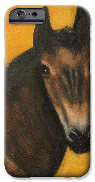 Freedom iPhone Cases - Charlie iPhone Case by Jeanne Fischer