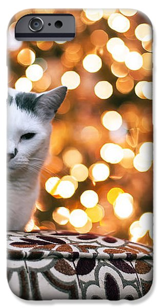 Charly and the Xmas tree iPhone Case by Edward Kreis