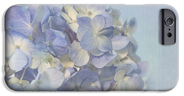 Pastel iPhone Cases - Charming Blue iPhone Case by Kim Hojnacki