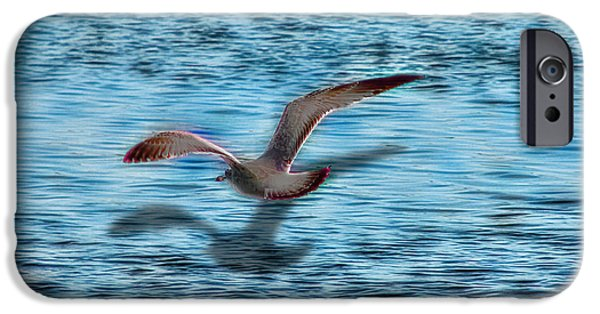 Flying Seagull Mixed Media iPhone Cases - Chasing My Shadow iPhone Case by EricaMaxine  Price