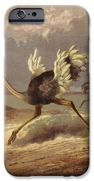 Morton iPhone Cases - Chasing The Ostrich Colour Litho iPhone Case by English School
