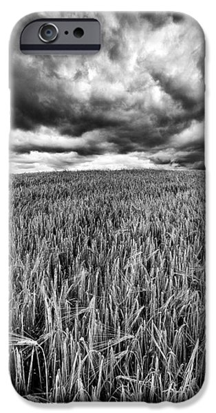 Field. Cloud iPhone Cases - Chasing the Storm iPhone Case by John Farnan