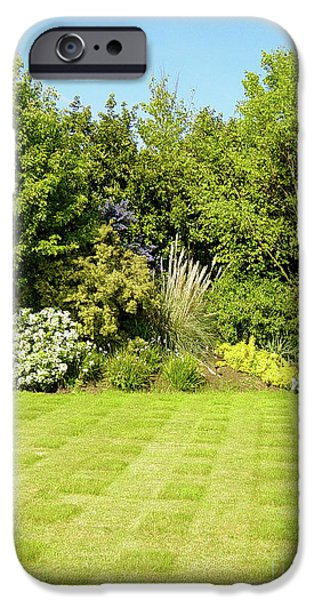 Floral Photographs iPhone Cases - Checkerboard Lawn iPhone Case by Deborah Smolinske