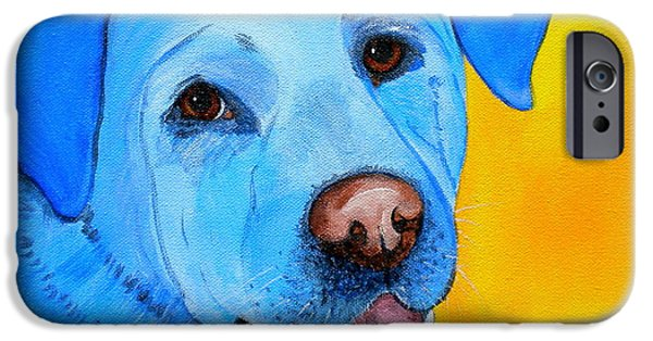 Debi Pople iPhone Cases - Cheddar iPhone Case by Debi Starr