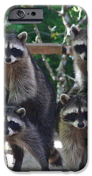 Cheerleading Raccoons iPhone Case by Kym Backland