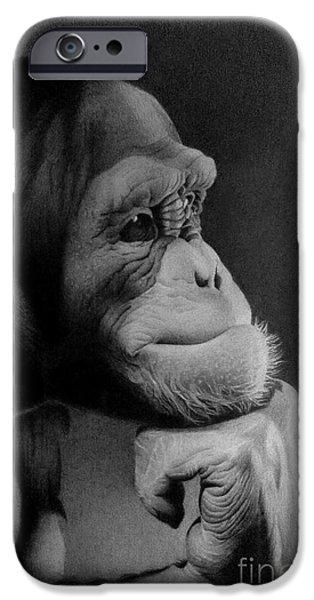Animal Drawings iPhone Cases - Cheeta iPhone Case by Miro Gradinscak