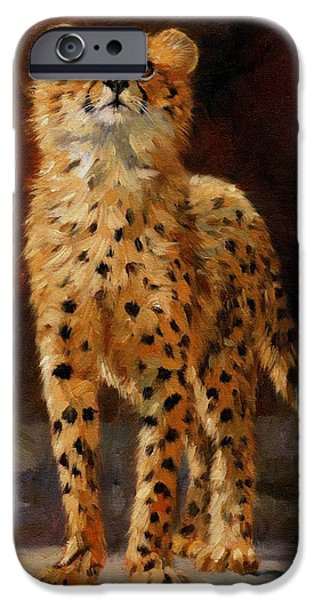 Young iPhone Cases - Cheetah Cub iPhone Case by David Stribbling