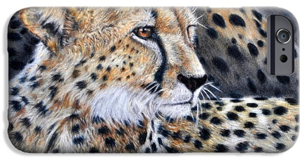 Recently Sold -  - Nature Study Paintings iPhone Cases - Cheetah iPhone Case by Louise Charles-Saarikoski