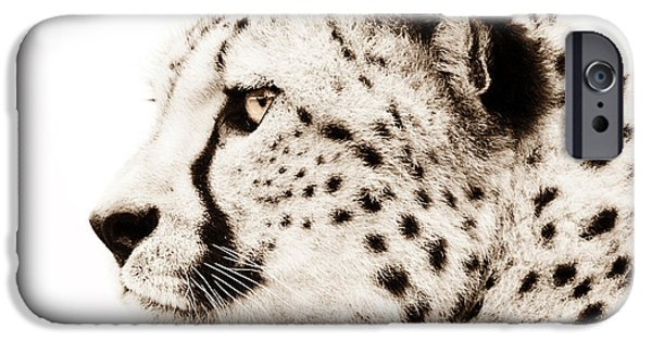 Cheetah Digital Art iPhone Cases - Cheetah iPhone Case by Photodream Art
