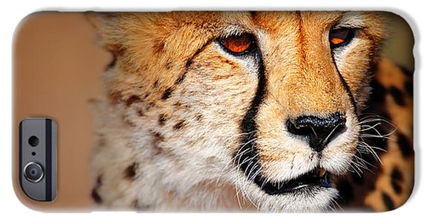 Close iPhone Cases - Cheetah portrait iPhone Case by Johan Swanepoel