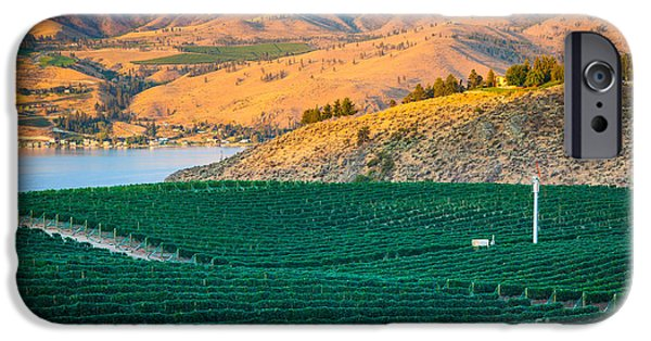 Agricultural iPhone Cases - Chelan Vineyard Sunset iPhone Case by Inge Johnsson