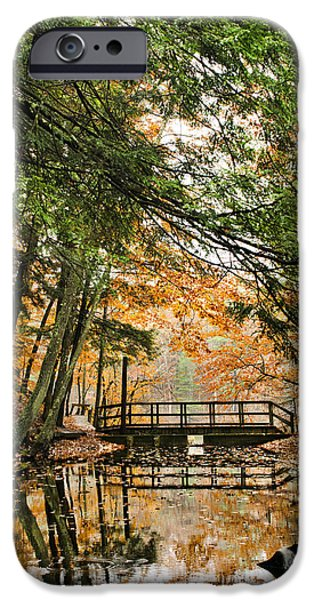 Rural iPhone Cases - Chenango Valley State Park iPhone Case by Christina Rollo
