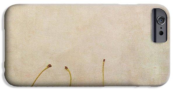 Board iPhone Cases - Cherries iPhone Case by Priska Wettstein