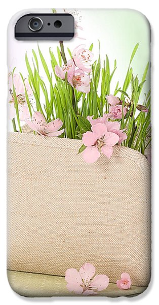 Cherry Blossom iPhone Case by Amanda And Christopher Elwell
