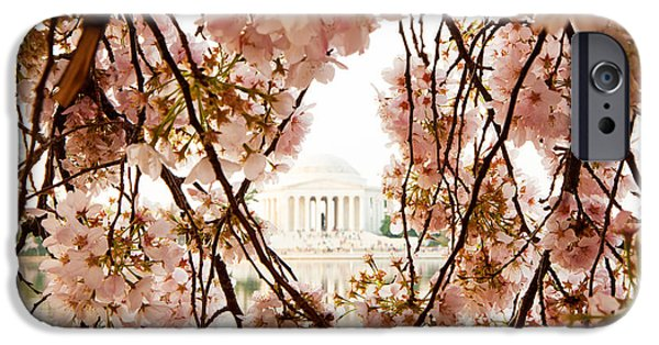 District Columbia Photographs iPhone Cases - Cherry Blossom Flowers in Washington DC iPhone Case by Susan  Schmitz