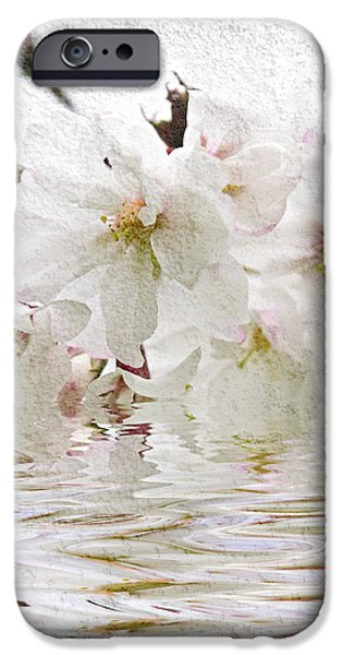 Cherry blossom in water iPhone Case by Elena Elisseeva
