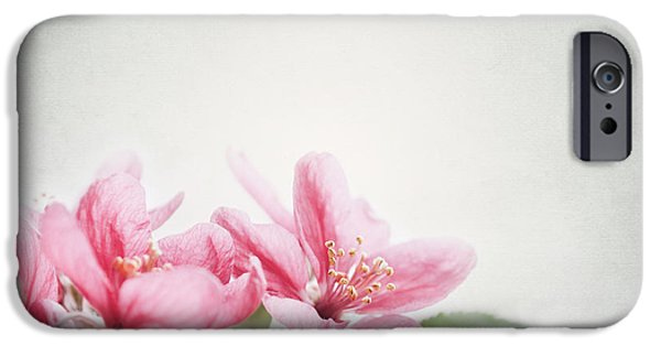 Blooming Pyrography iPhone Cases - Cherry Blossom iPhone Case by Jelena Jovanovic