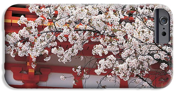 Kyoto iPhone Cases - Cherry Blossom Kamigamo Shrine Kyoto iPhone Case by Panoramic Images