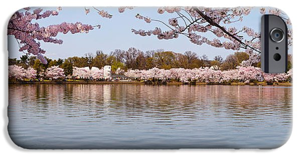 Martin Luther King Jr iPhone Cases - Cherry Blossom Trees Near Martin Luther iPhone Case by Panoramic Images