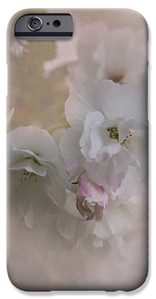 Cherry Blossoms iPhone Cases - Cherry Blossoms iPhone Case by Angie Vogel