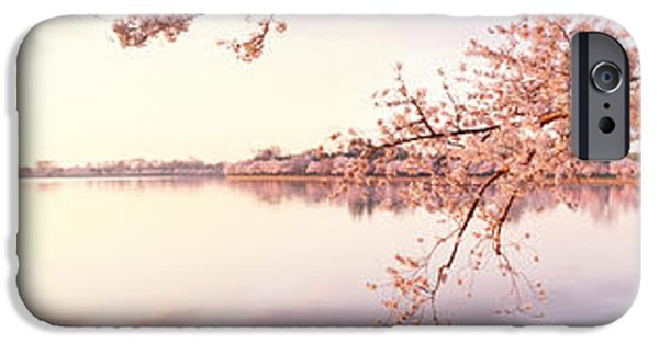 Cherry Blossoms iPhone Cases - Cherry Blossoms At The Lakeside iPhone Case by Panoramic Images