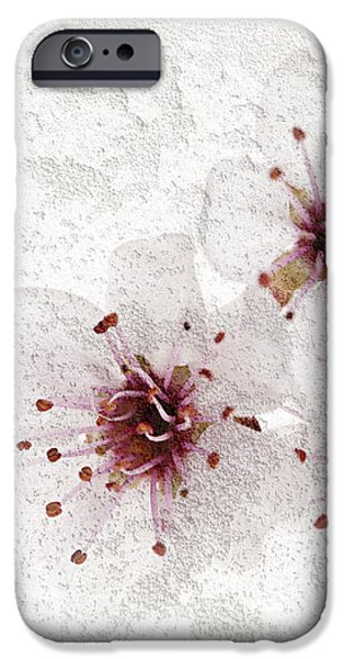 Cherry blossoms close up iPhone Case by Elena Elisseeva