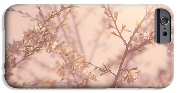 Cherry Blossoms Photographs iPhone Cases - Cherry Blossoms iPhone Case by Diane Diederich