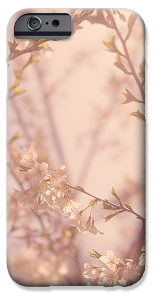 Cherry Blossoms iPhone Case by Diane Diederich