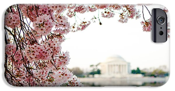 District Columbia Photographs iPhone Cases - Cherry Blossoms Framing the Jefferson Memorial iPhone Case by Susan  Schmitz
