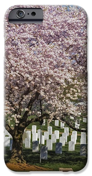 D.c. iPhone Cases - Cherry Blossoms Grace Arlington National Cemetery iPhone Case by Susan Candelario