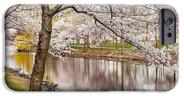 Recently Sold -  - City. Boston iPhone Cases - Cherry Blossoms on the Storrow Lagoon iPhone Case by Susan Cole Kelly