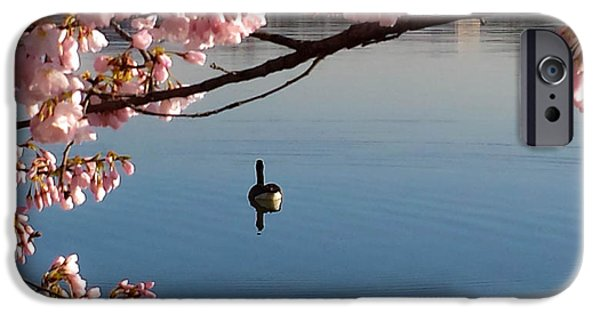 Washingtondc iPhone Cases - Cherry Blossoms Over the Tidal Basin iPhone Case by Debra Bowers