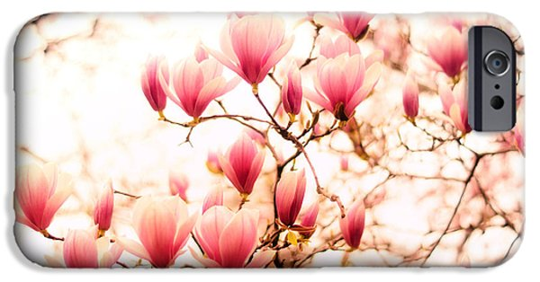 Cherry Blossoms Photographs iPhone Cases - Cherry Blossoms - Springtime Blush Pink iPhone Case by Vivienne Gucwa