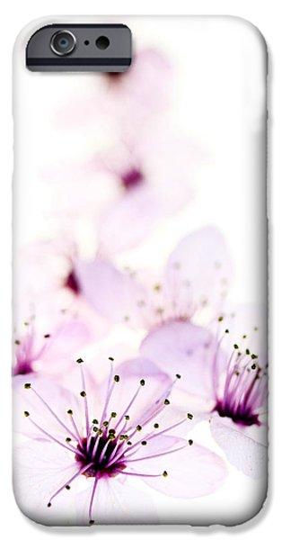 Cherry Cascade iPhone Case by Rebecca Cozart