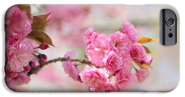 Cherry Blossoms iPhone Cases - Soft Cherry iPhone Case by Jessica Jenney
