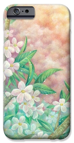 Cherry Blossoms Drawings iPhone Cases - CherryBlossoms iPhone Case by Charity Goodwin