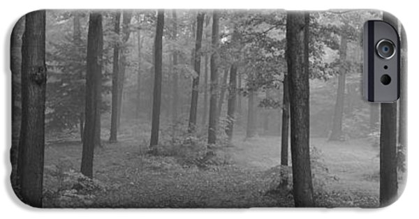 Mist iPhone Cases - Chestnut Ridge Park, Orchard Park, New iPhone Case by Panoramic Images