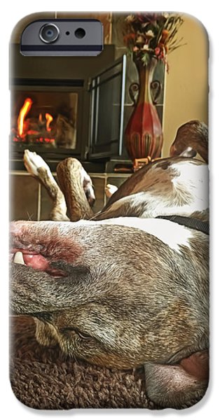 Recently Sold -  - Dog Close-up iPhone Cases - Chestnuts Roasting on an Open Fire  iPhone Case by Brian Cross
