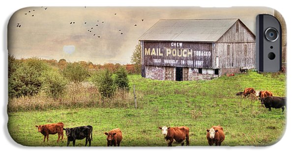 Rural iPhone Cases - Chew Mail Pouch iPhone Case by Lori Deiter