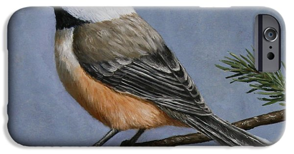 Wild Animals iPhone Cases - Chickadee Charm iPhone Case by Crista Forest
