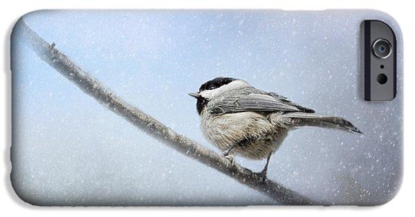 Chickadee iPhone Cases - Chickadee In The Snow iPhone Case by Jai Johnson