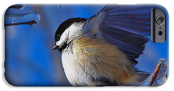Pastel iPhone Cases - Chickadee Shakes Off the Cold iPhone Case by Bill Caldwell -        ABeautifulSky Photography