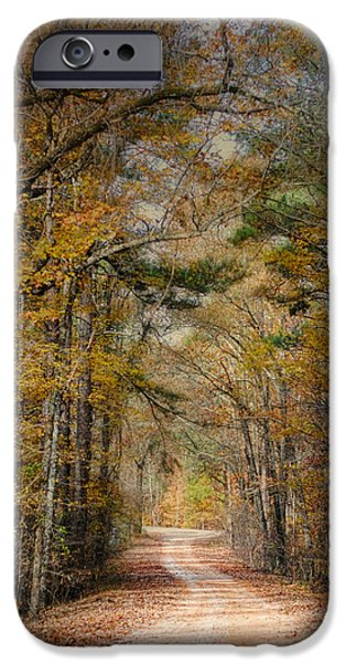 Autumn Scenes iPhone Cases - Chickasaw Forest in Autumn 2 - Fall Landscape iPhone Case by Jai Johnson