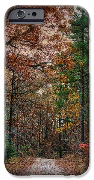 Autumn Scenes iPhone Cases - Chickasaw Forest in Autumn - Fall Landscape iPhone Case by Jai Johnson