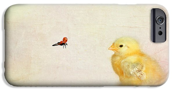 Animal Photography Mixed Media iPhone Cases - Chicken and Beetle iPhone Case by Heike Hultsch
