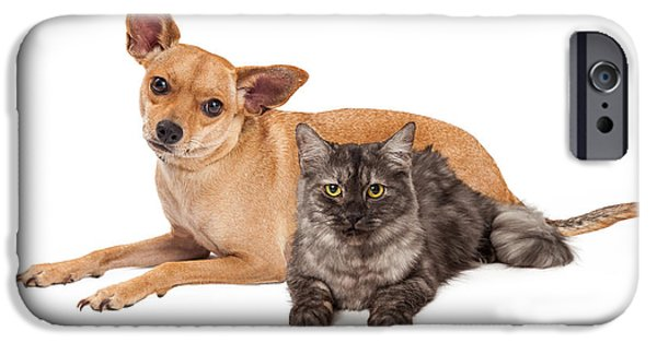 Domestic Short Hair Cat iPhone Cases - Chihuahua Dog and Gray Cat iPhone Case by Susan  Schmitz
