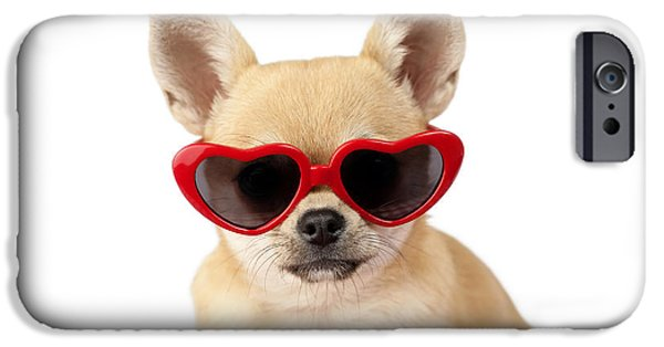 Sitting Digital iPhone Cases - Chihuahua in Heart Sunglasses DP813 iPhone Case by Greg Cuddiford