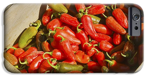 Hot Peppers iPhone Cases - Chili Peppers At Maine Farmers Market Photograph iPhone Case by Keith Webber Jr